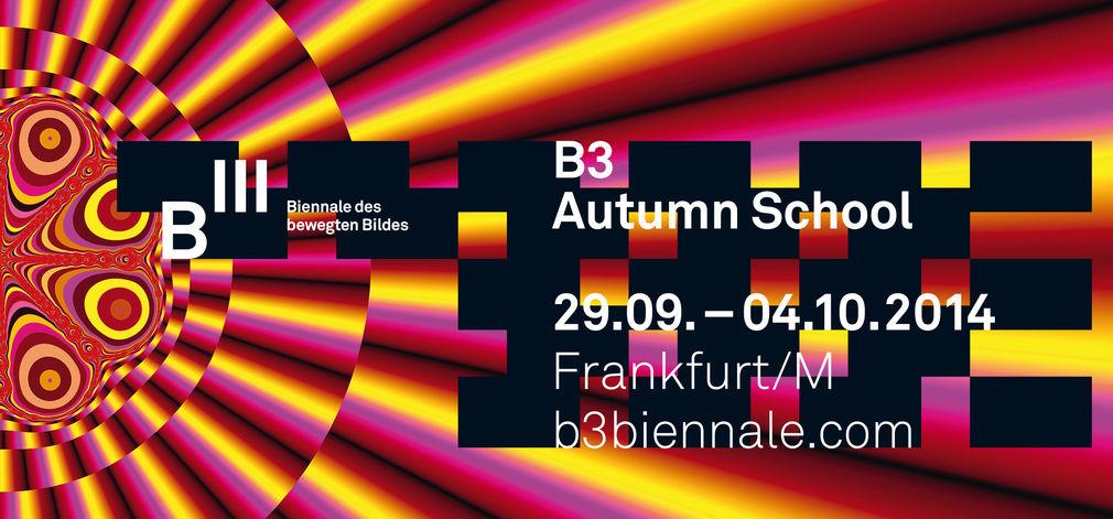 B3 - Autumn School 2014